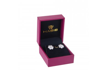 Pancy Diamond Earrings